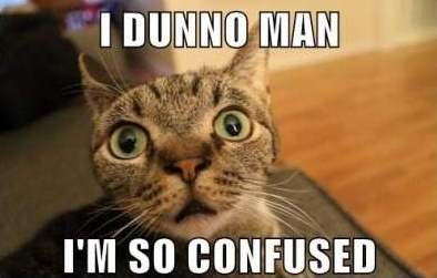 Confused-Cat-Meme-2